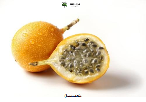 Passiflora ligularis - Granadilla - 25 semillas - Sweet Grenadilla